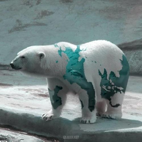 Fransız Sanatçı Zekice Fantastik Hayvanlar Oluşturmak için Photoshop İle İnanılmaz Çalışmalar Yapıyor