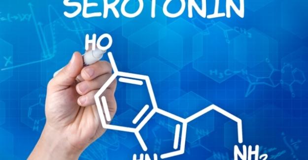 Serotonin Nedir? Serotoninin Faydaları Nelerdir?