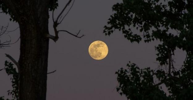 Ay Tutulmasının Nedenleri