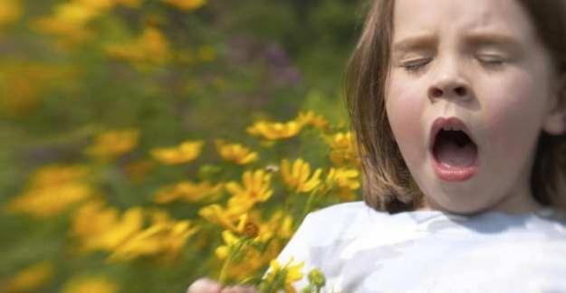 Çocuklarda Saman Nezlesi Belirtileri Saman Nezlesi Nedir?