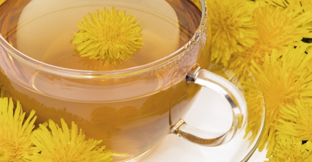 Karahindiba Çayı Nasıl Yapılır? Karahindiba Sağlık Faydaları