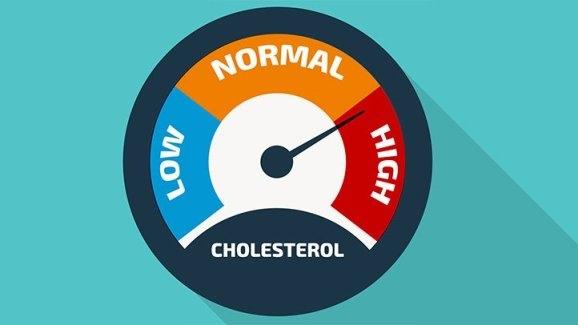 Yüksek Kolesterol Çeşitleri, Belirtileri, Nedenleri Ve Tedavisi