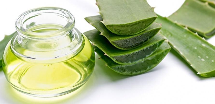 Aloe Vera nedir? Nasıl kullanılır? Sağlık, cilt ve saç için faydaları