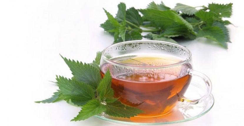 Isırgan Çayı'nın 11 İnanılmaz Faydası