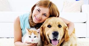 Apartmanda Köpek İle Birlikte Yaşamak