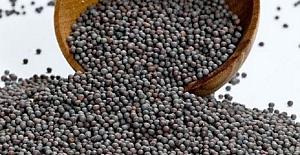 Hardal Tohumu ve Yağının Sağlık Faydaları Ve Zararları Nelerdir?