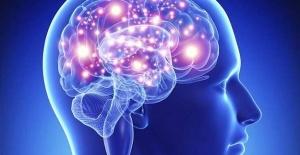Psikobiyotik nedir? Zihin Harikadır