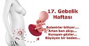 17.Haftalık Hamilelik Belirtileri Bebek Ve Anne Gelişimi