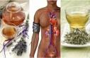 Polikistik Over Sendromu İçin Bitkisel Tedavi Yöntemleri