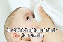 Anne Sütünde Hangi Hormonlar Vardır ve Neden Önemlidir?