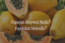 Papayas Meyvesi Nedir? Faydaları Nelerdir?