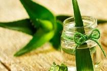 Aloe Vera Şampuanı Nasıl Yapılır? Saç bakımı