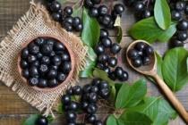 Aronia (aronya) meyvesinin faydaları nelerdir? Aronya nerede yetişir?