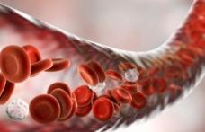 Trombosit Sayısını Doğal Olarak Nasıl Arttırırsınız?