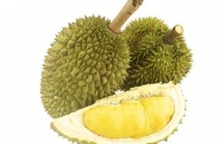 Durian Meyvesinin 9 İnanılmaz Faydası