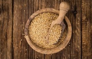 Hardal tohumu nedir? Hardal tohumunun sağlık faydaları...