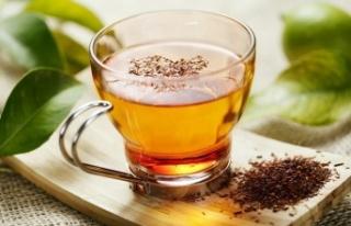 Rooibos Çayının 15 İnanılmaz Faydası