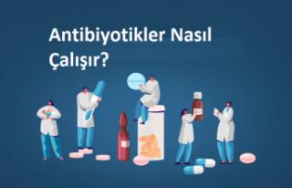 Antibiyotikler Nasıl Çalışır?