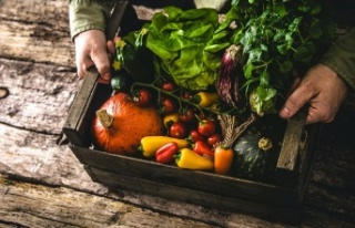 Keto Dostu En İyi 25 Düşük Karbonhidratlı Sebze