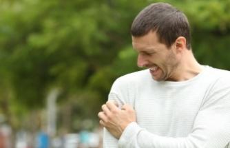 Kronik ve Akut Solunum Yolu Alerjik Durumlara Genel Bir Bakış