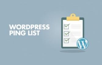 Yeni Yazının Daha Hızlı İndekslenmesi için WordPress Ping Listesi