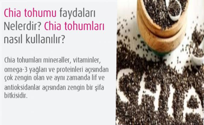 Chia tohumu faydaları Nelerdir? Chia tohumları nasıl kullanılır?