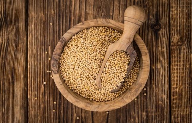 Hardal tohumu nedir? Hardal tohumunun sağlık faydaları nelerdir?